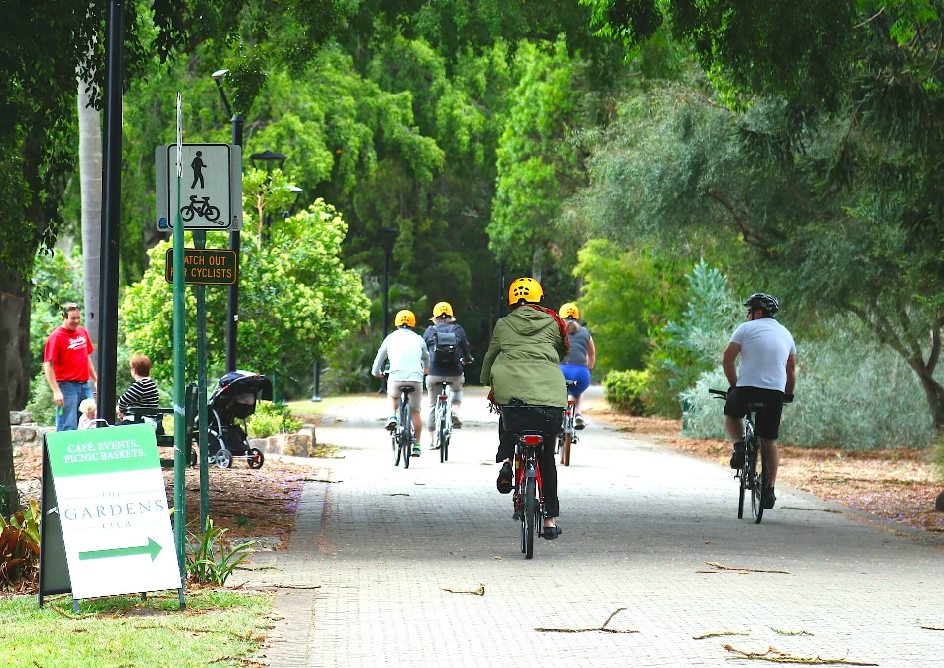Ride ebike through Brisbane botanic gardens